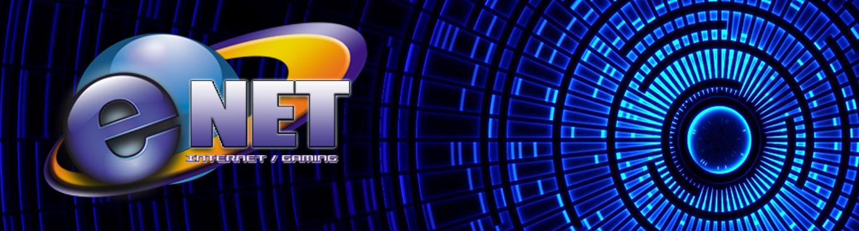 e-net-website-cover